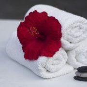 Fleur et serviette